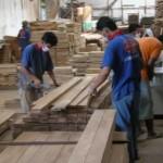 teak-wood-istanakayu (6)